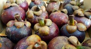 O fruto do mangustão Imagens de Stock