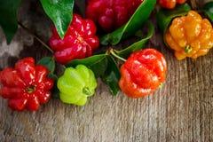 O fruto tropical igualmente chamou Pitanga, cereja brasileira Foto de Stock Royalty Free