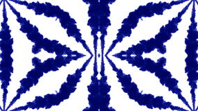 O fundo abstrato de fluxos da tinta ou do fumo é caleidoscópio ou mancha de tinta test6 de Rorschach Isolado no branco no movimen ilustração royalty free