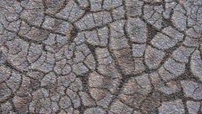 O fundo abstrato que simula a quebra da textura rachou o solo secado com pedras pequenas Fotografia de Stock Royalty Free