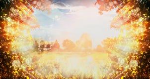 O fundo bonito da natureza do outono com folha, céu, campo e sol das árvores irradia imagem de stock