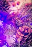 O fundo bonito do Natal com agulhas do pinho e os cones do pinho fecham-se acima Foto de Stock