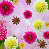 O fundo cênico, composição floral para o projeto Fotografia de Stock Royalty Free