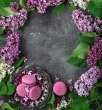 O fundo cinzento da textura com macarons da amora-preta no vintage plat Foto de Stock
