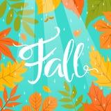O fundo colorido do quadro da beira da queda do outono com parque sae de gotas e de feixes da chuva Imagens de Stock