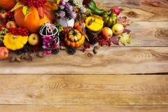 O fundo com abóboras, birdcage decorado da ação de graças, copia Fotografia de Stock
