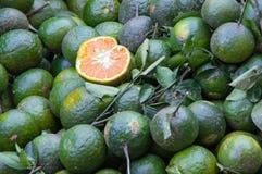 O fundo com o fruto das laranjas doces crescido nos trópicos peça 10 foto de stock