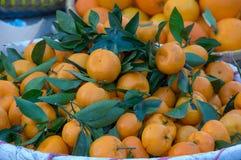 O fundo com o fruto das laranjas doces crescido nos trópicos peça 11 fotos de stock royalty free
