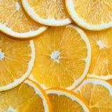 O fundo cortado das laranjas, fruto fresco brilhante cortou mesmo em fatias Fotografia de Stock Royalty Free