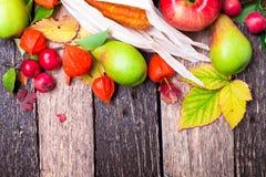 O fundo da ação de graças com outono frutifica e sae em uma tabela de madeira rústica Opinião superior da colheita do outono Copi Fotos de Stock