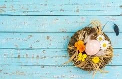 O fundo da Páscoa com o ovo da páscoa no ninho da palha com mola floresce na luz - tabela de madeira azul Fotos de Stock