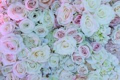 O fundo das rosas Imagem de Stock Royalty Free