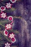 O fundo de madeira cinzento c do Natal decorou o ramo do abeto Foto de Stock