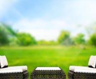 O fundo de madeira do tampo da mesa e 3d verdes rendem Imagem de Stock