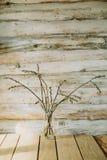 O fundo de madeira velho com salgueiro ramifica em uma garrafa Fotografia de Stock Royalty Free