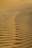 O fundo do deserto Fotos de Stock
