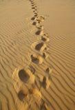 O fundo do deserto Foto de Stock Royalty Free
