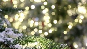 O fundo do Natal, ramo de árvore, neve, ilumina o bokeh filme
