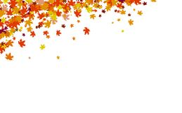 O fundo do outono, conceito da ação de graças, folhas de bordo dispersa o conjunto na ilustração do vetor da natureza ilustração do vetor