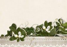 O fundo do vintage com mola floresce em quadriculado de papel Fotografia de Stock Royalty Free