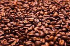 O fundo dos feijões de café, muitos feijões de café fecha-se acima Foto de Stock Royalty Free