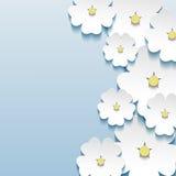 O fundo elegante floral abstrato com 3d floresce sakura Fotos de Stock Royalty Free