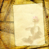 O fundo floral do vintage. Imagens de Stock Royalty Free