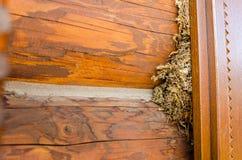 O fundo marrom de madeira velho Foto de Stock Royalty Free