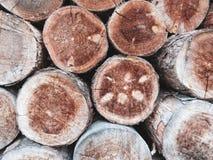 O fundo natural e a textura abstratos muito agradáveis, troncos de árvore secos cortaram, close up da madeira connosco, quebras e foto de stock