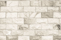 O fundo preto e branco da textura da parede de tijolo/tem-me ao floo Imagem de Stock Royalty Free