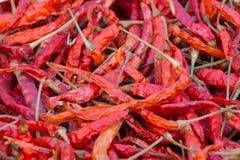 O fundo secado vermelho combinado dos pimentões Foto de Stock