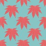 O fundo simétrico Folhas vermelhas Foto de Stock
