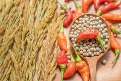O fundo vermelho do condimento da semente do arroz dos pimentões é de madeira fotografia de stock