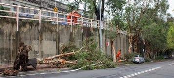 O furacão esclarece Fotografia de Stock Royalty Free