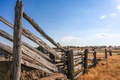 O gado de madeira dilapidado velho compete a cerca no país Fotografia de Stock Royalty Free