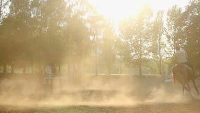 O galope masculino do jóquei montou no cavalo ostentando no autódromo, equitação video estoque