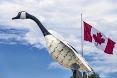 O ganso icônico de Wawa Fotografia de Stock