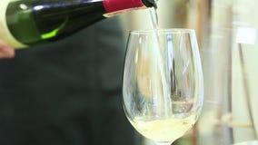 O garçom derrama o vinho em um vidro video estoque