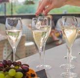O garçom joga uma cobertura em vidros de vinho Fotos de Stock Royalty Free