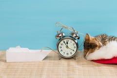 O gatinho em um chapéu vermelho está dormindo, ao lado de um despertador e de um barco de papel fotografia de stock