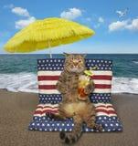 O gato com chá frio senta-se em um colchão de ar fotografia de stock royalty free