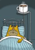 O gato doente está na cama que tem um soro do café fotos de stock royalty free