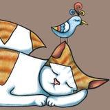 O gato e o pássaro estão dormindo Foto de Stock Royalty Free