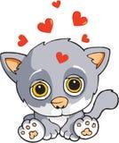 O gato está no amor Imagem de Stock