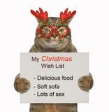 O gato guarda a lista de objetivos pretendidos 2 do Natal imagem de stock