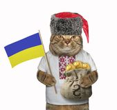 O gato guarda uma bandeira e um saco de hryvnia fotografia de stock