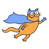 O gato incrível em uma capa de chuva está pronto para salvar o mundo Ilustração do vetor ilustração do vetor