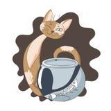 O gato manhoso comeu peixes do aquário Imagens de Stock Royalty Free