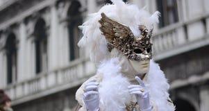O gato mascarado foto de stock royalty free