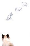 O gato novo da fome está sonhando sobre comer imagem de stock